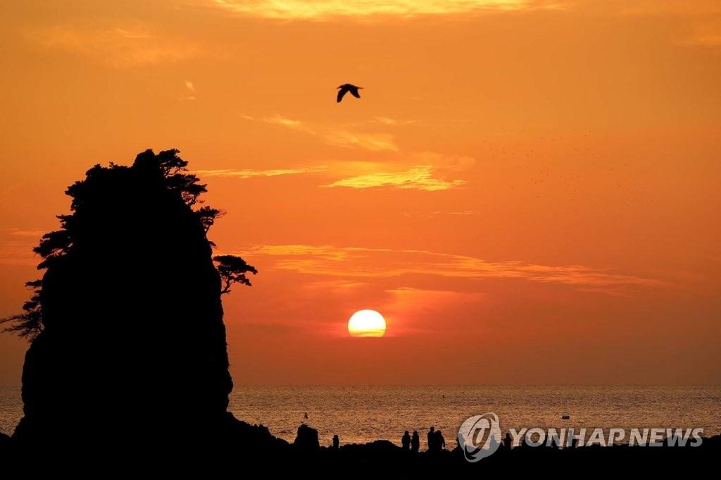 资料图片:泰安花池海水浴场的日落美景(韩联社/泰安郡供图)
