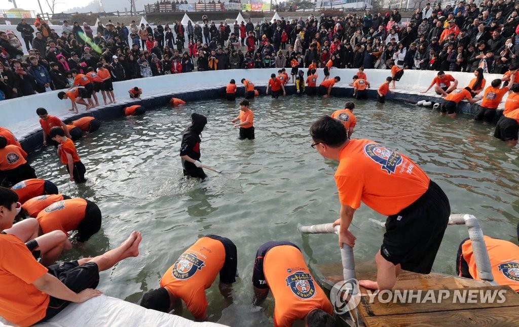 华川山鳟鱼庆典正酣