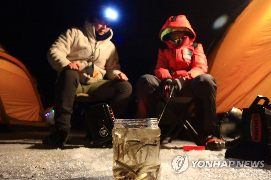 1月28日,在江原道麟蹄郡昭阳江上游冰面上,访客们享受夜间钓鱼的乐趣。(麟蹄郡政府供图)