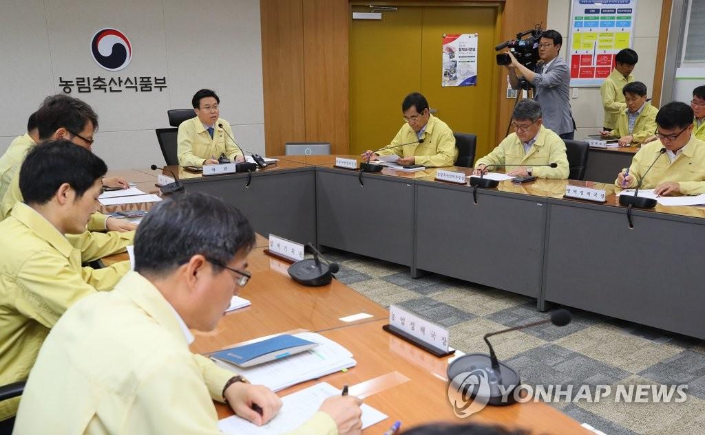 5月31日,在韩国中央政府世宗办公楼,农林畜产食品部次官李在彧(坐在农食品部部徽前)主持召开会议。(韩联社)
