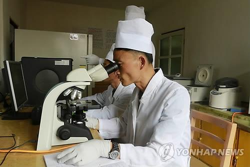 联合国粮农组织:猪瘟或致朝鲜猪肉产量大减