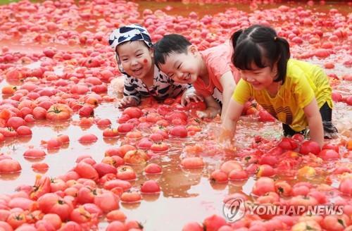 好玩的西红柿