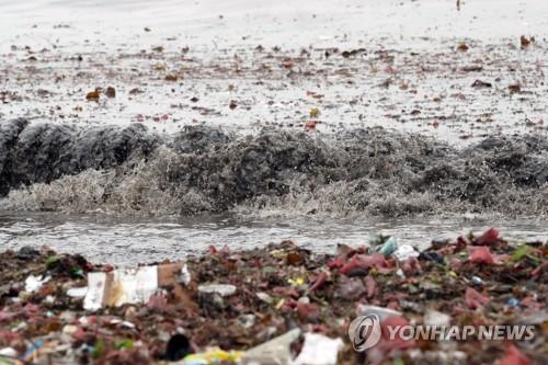 """被台风""""还""""回来的垃圾"""