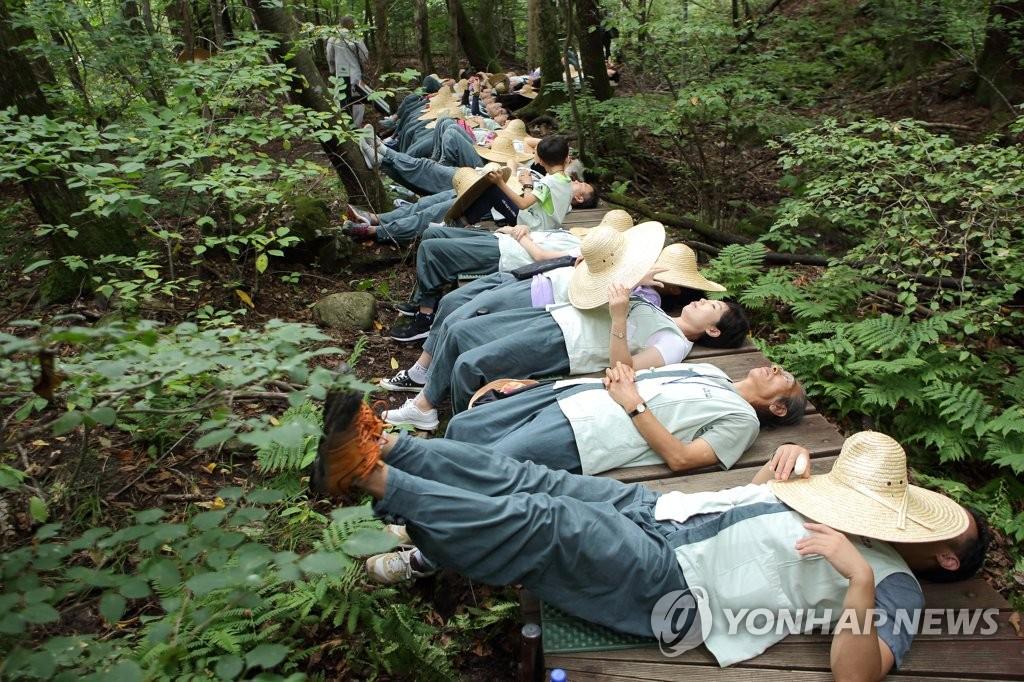 寺庙寄宿林中疗愈