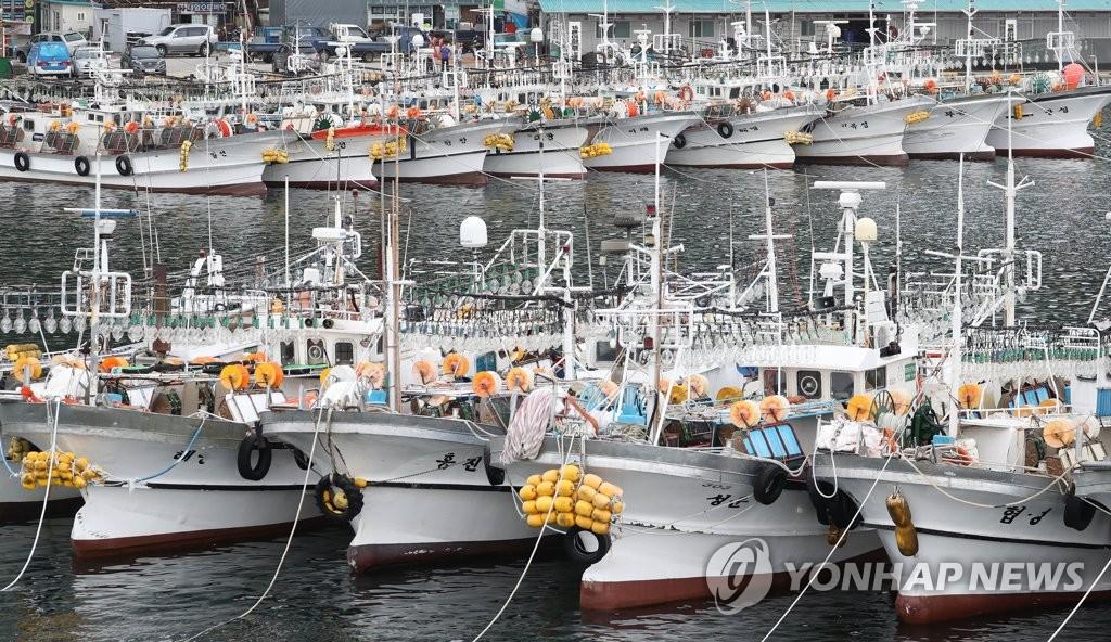 渔船进港躲避台风