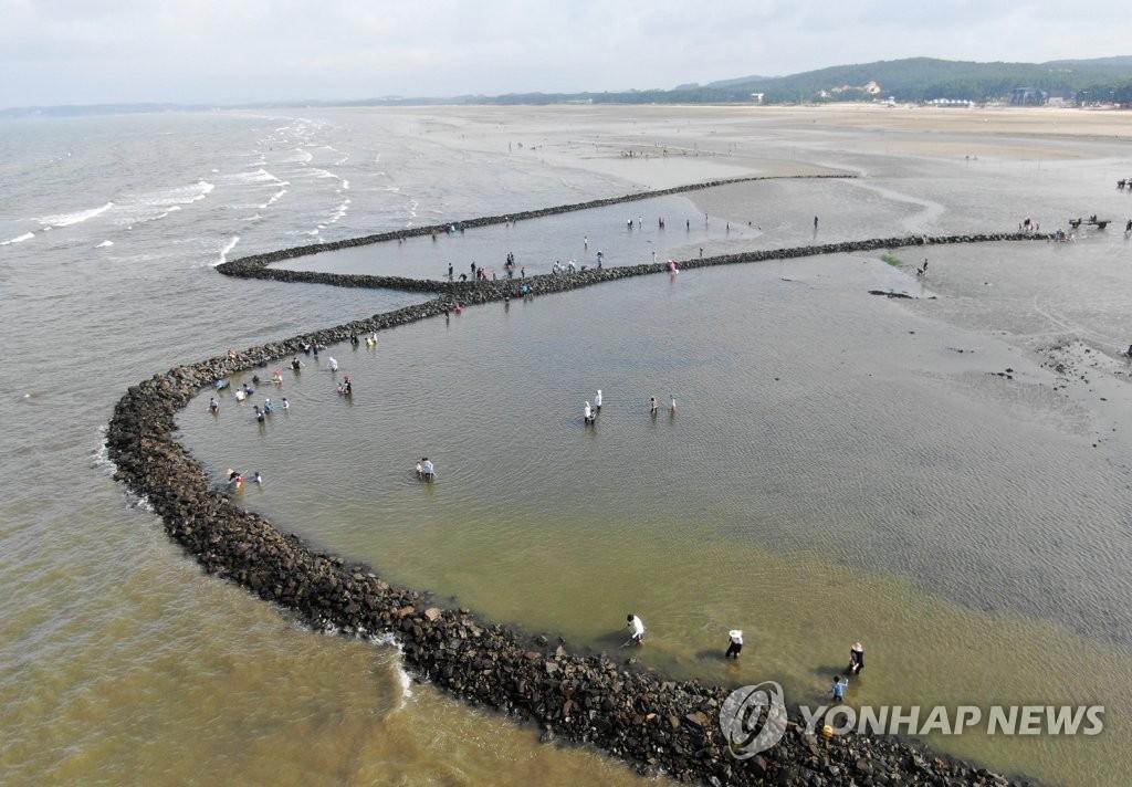 石堤文化节