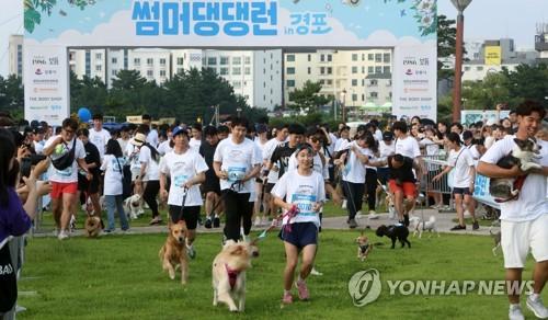 带爱犬跑马拉松