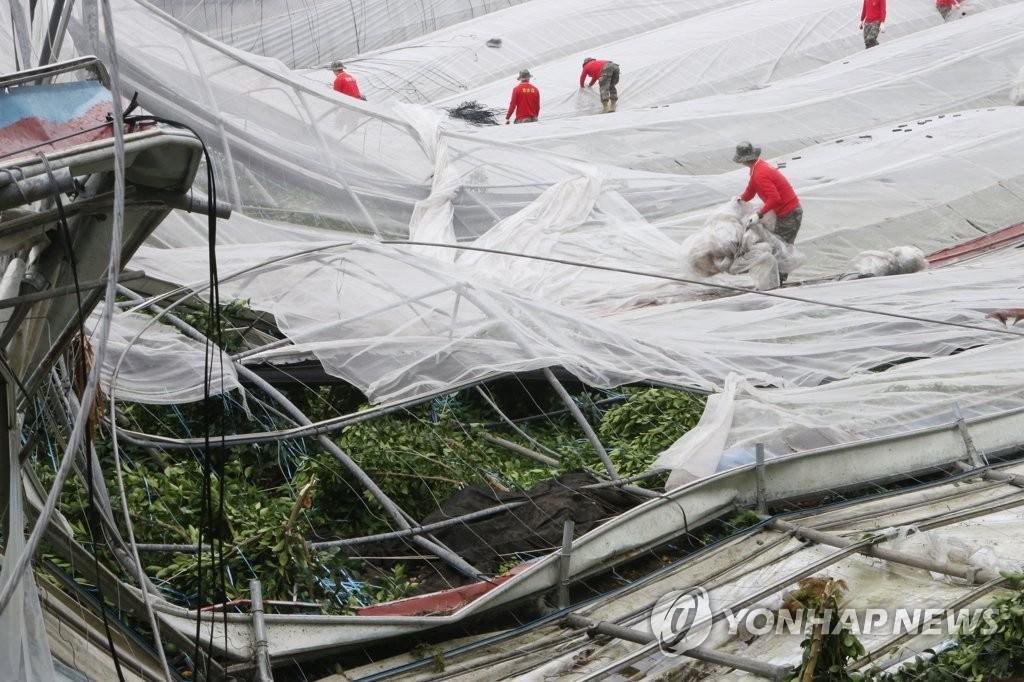 """台风""""玲玲""""导致韩国9400余处设施受损"""