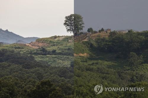 韩国防部新年工作计划:继续履行韩朝军事协议