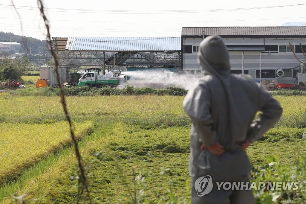 详讯:韩政府划定北部6地为非瘟重点防控区