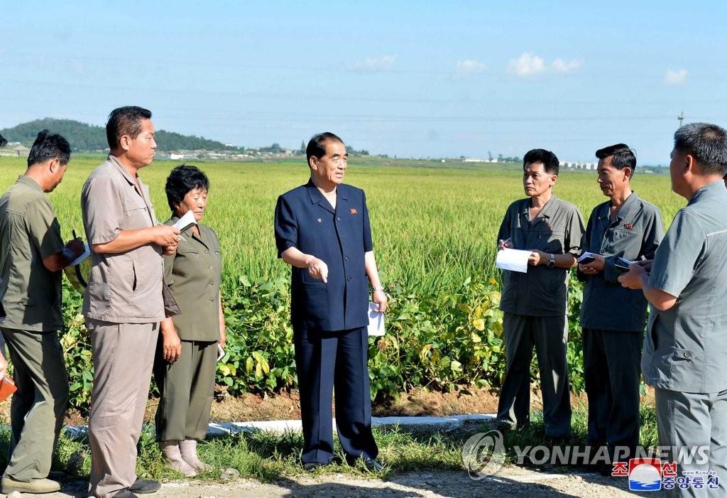 朝鲜高官视察平壤集体农场
