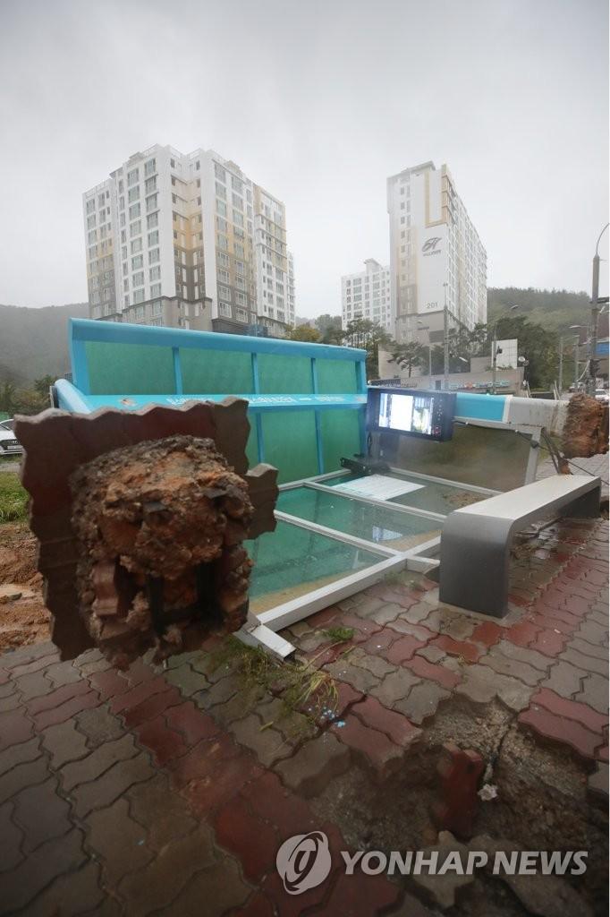 """详讯:台风""""塔巴""""致韩国30人受伤"""