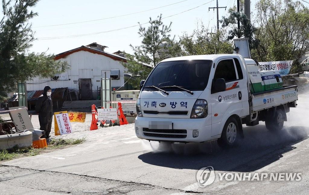 韩国发现第三例非洲猪瘟疫情