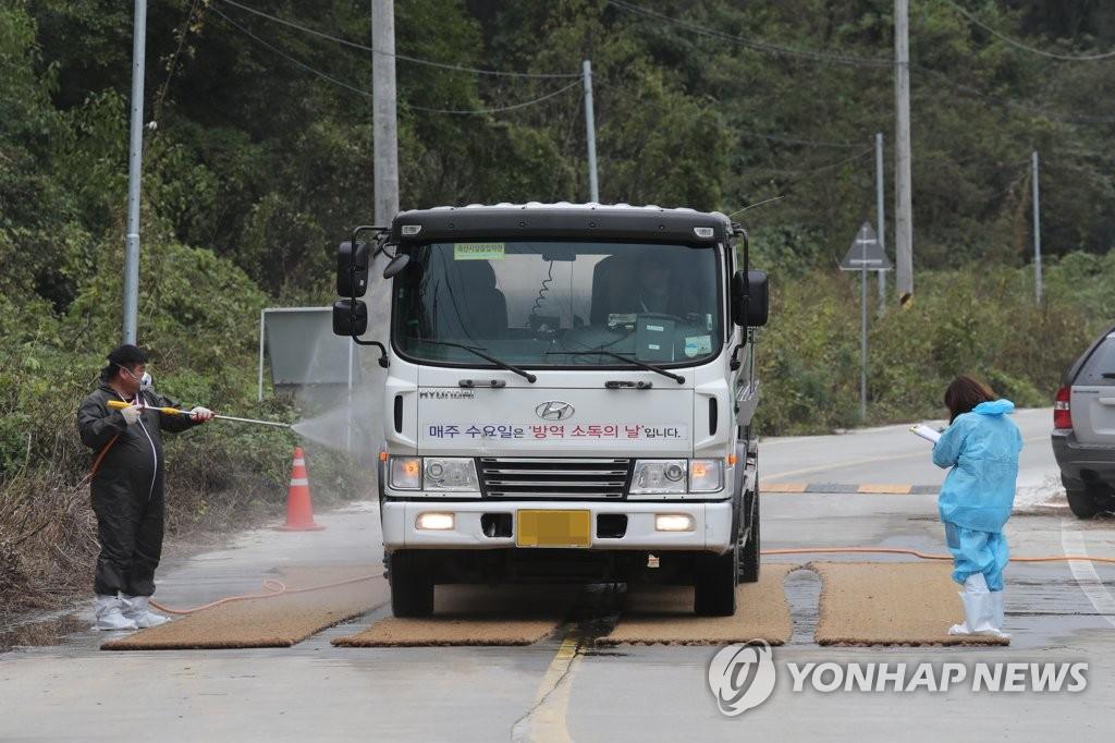 韩国出现第14例猪瘟病例