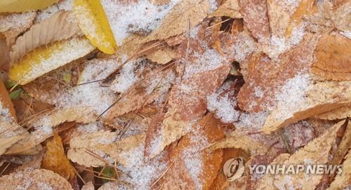 江原春川迎初雪