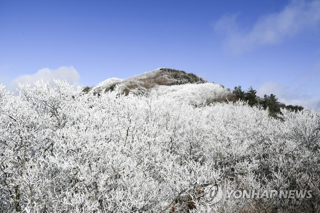 智异山雾凇美景