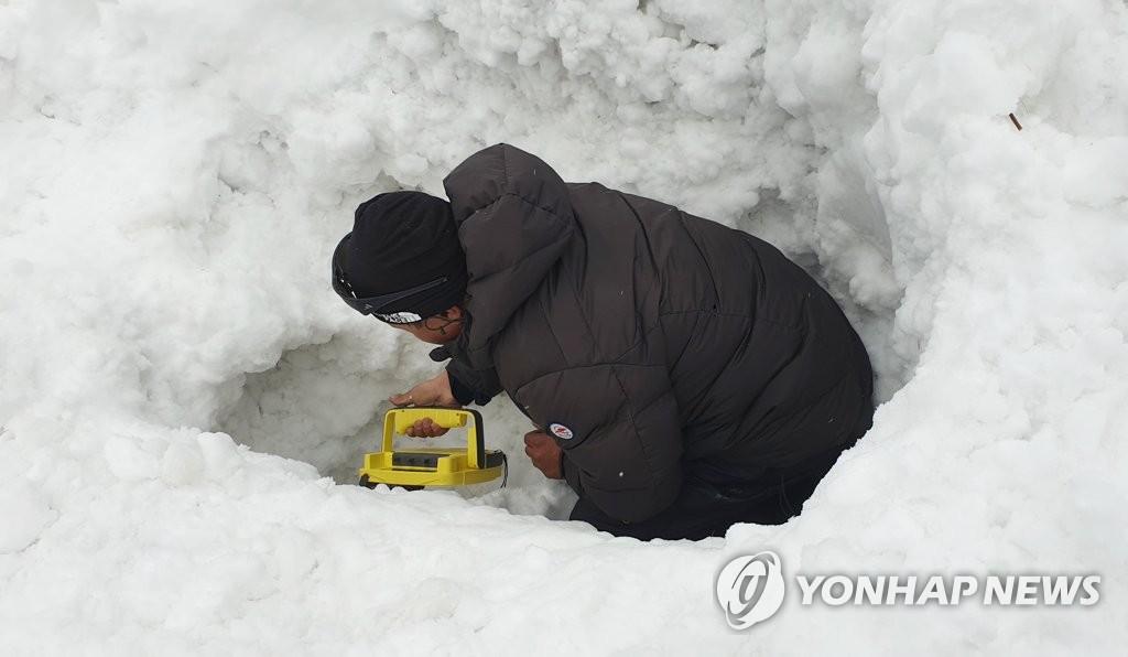 尼泊尔雪崩失踪者搜索工作暂停