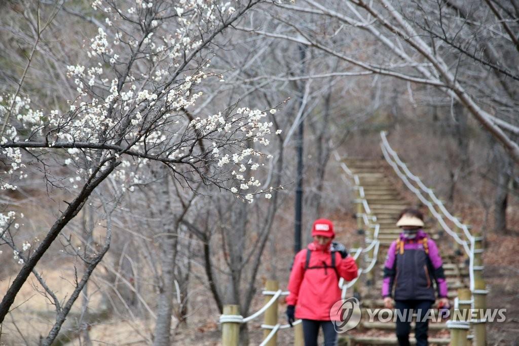 韩国去年冬季平均气温创1973年以来最高