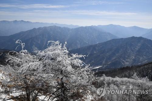 智异山雪景