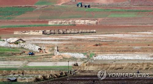 韩官员推测朝鲜今年粮食缺口为86万吨
