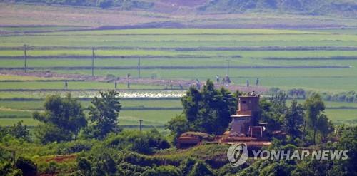 联合国粮农组织:朝鲜今年仍将需要外界粮援
