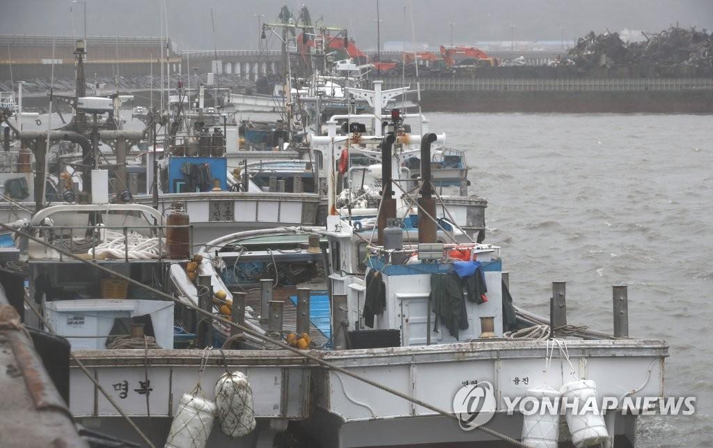 渔船停工避风浪