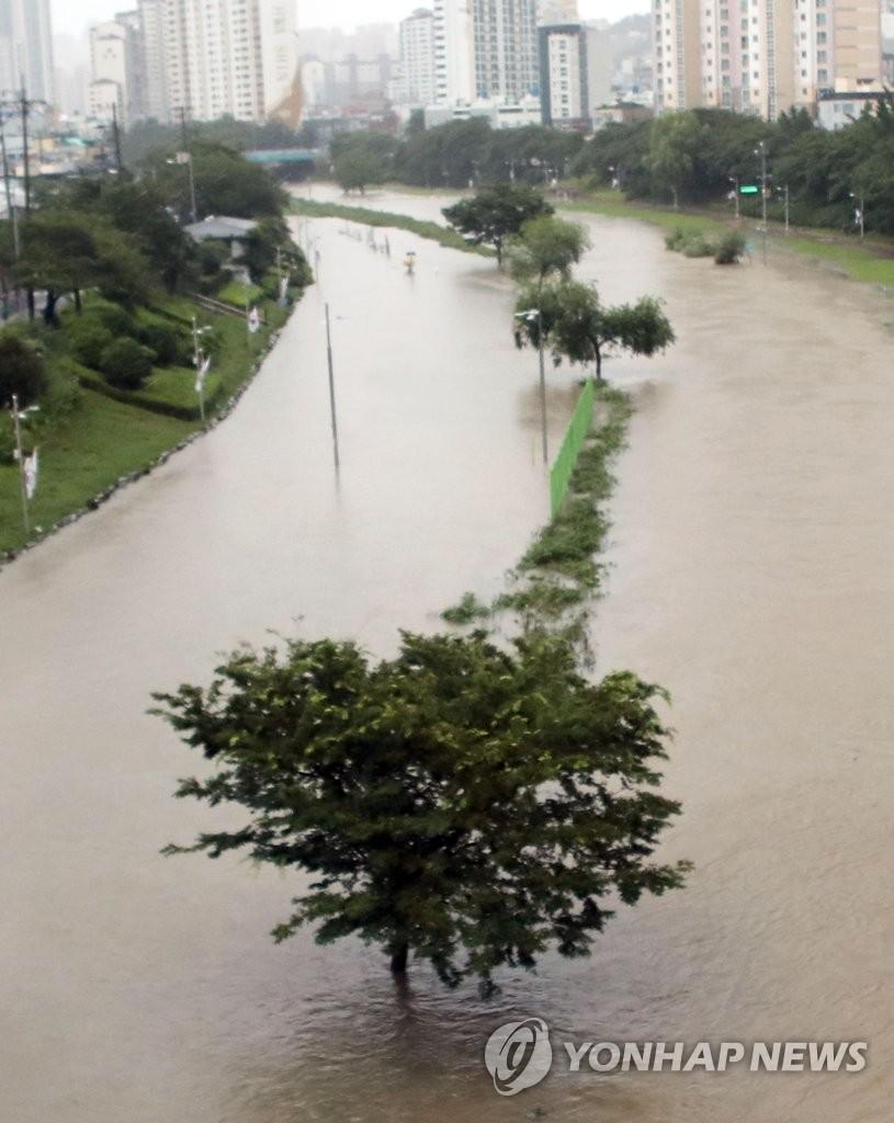 釜山降暴雨
