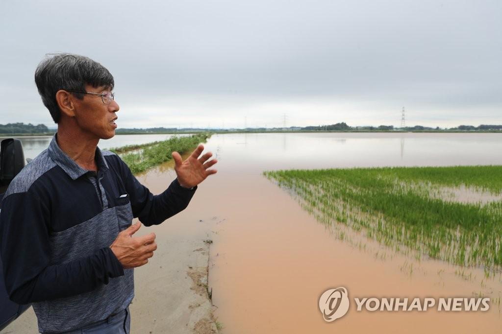资料图片:农田被淹 韩联社