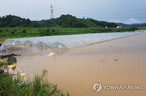 韩国中部地区暴雨致15人死亡11人失踪