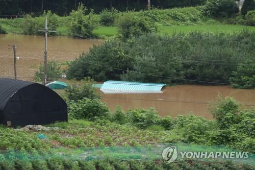 韩国持续一周暴雨致2500人受灾