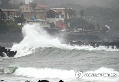 """台风""""蔷薇""""海浪上线"""