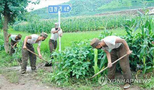 朝鲜人民军投入抗洪抢险