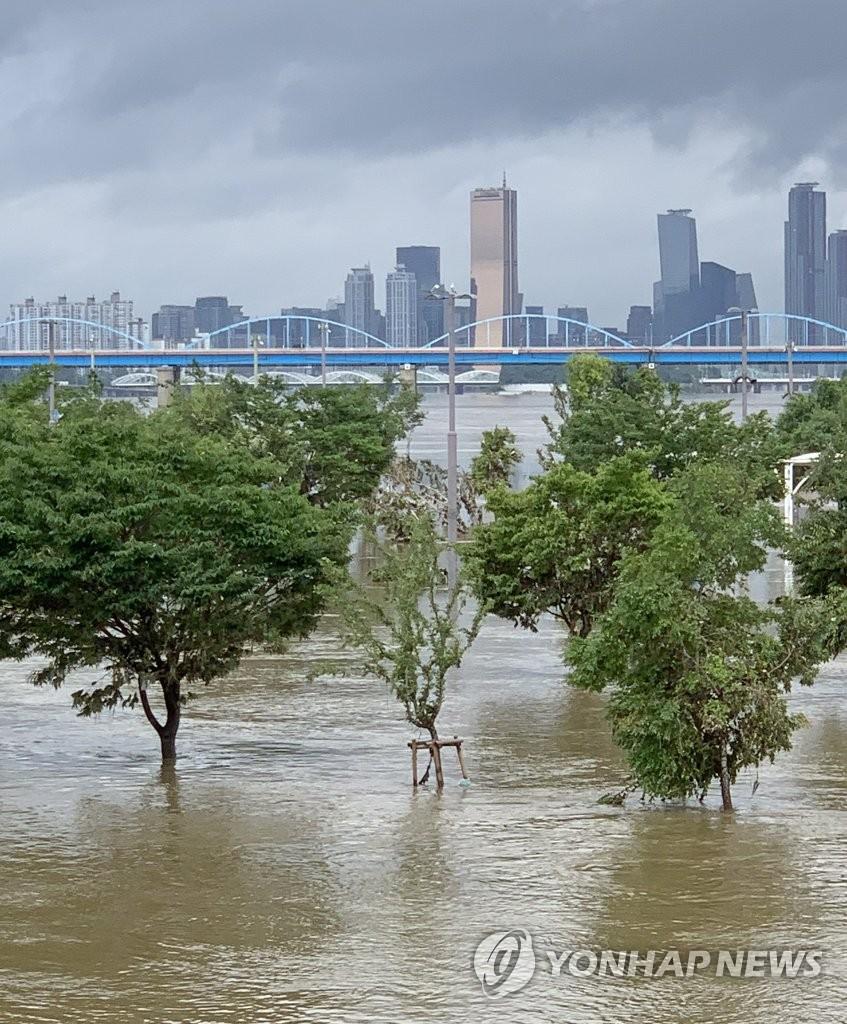 汉江公园被淹