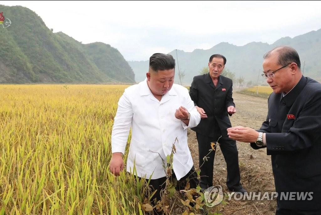 朝鲜建党节前颂扬金正恩9年政绩