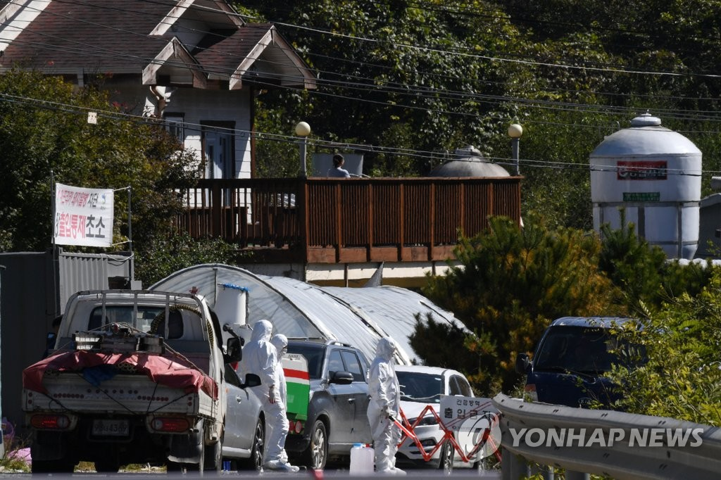 韩国又现家猪猪瘟病例 家畜禁运令延长一天