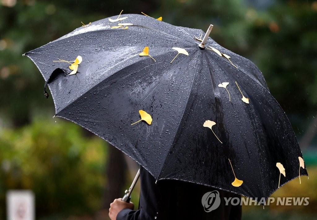 首尔降雨量和最低气温创同月新高