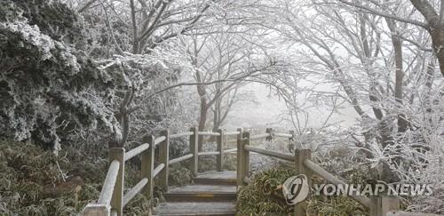 汉拿山迎今冬第一场雪