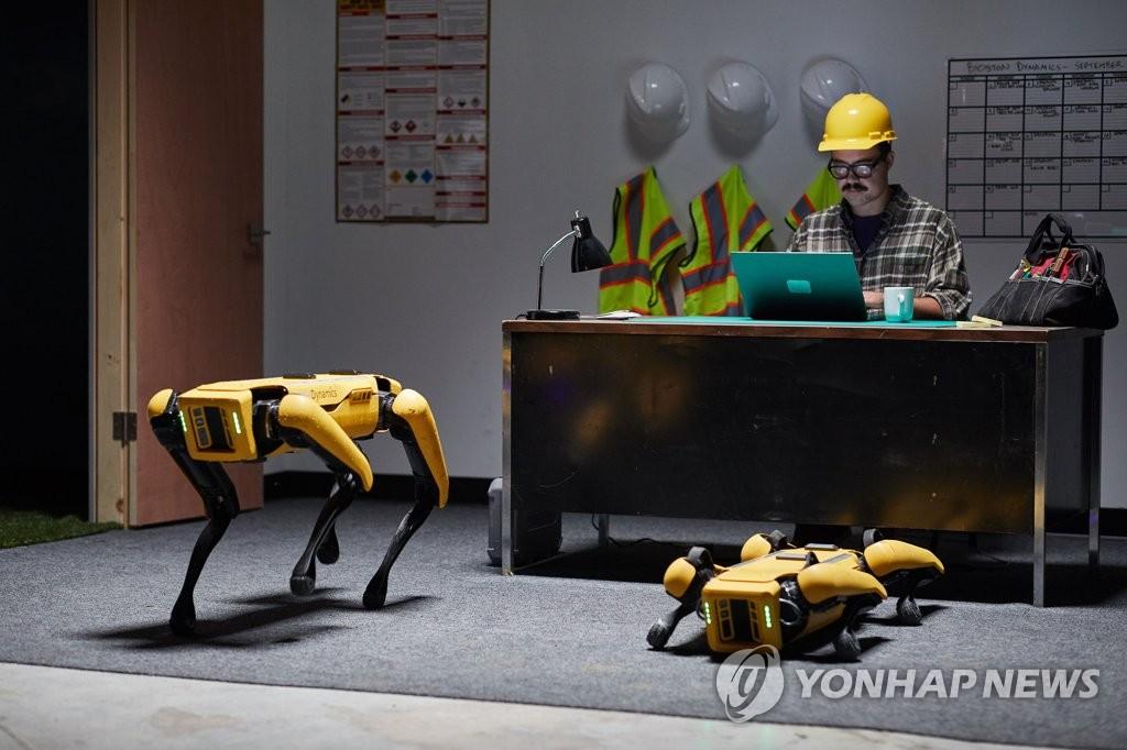 """波士顿动力研发的机器狗""""Spot"""" 韩联社/现代汽车集团供图(图片严禁转载复制)"""