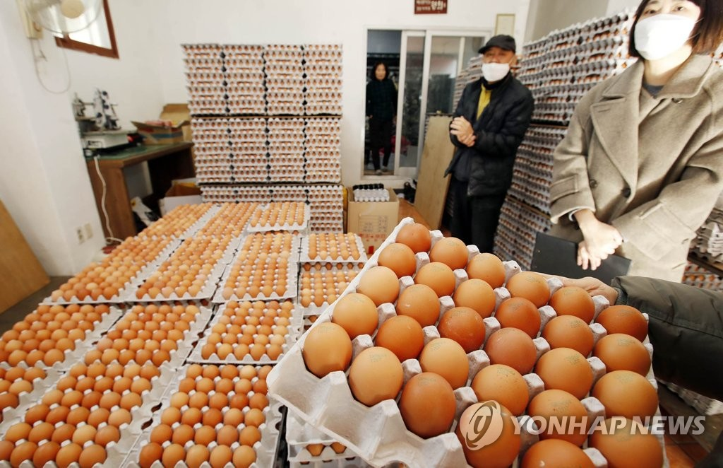资料图片:12月26日,在光州市北区的一家鸡蛋店铺,区政府工作人员开展有关物价稳定和卫生宣传活动。 韩联社/光州市北区政府厅供图(图片严禁转载复制)