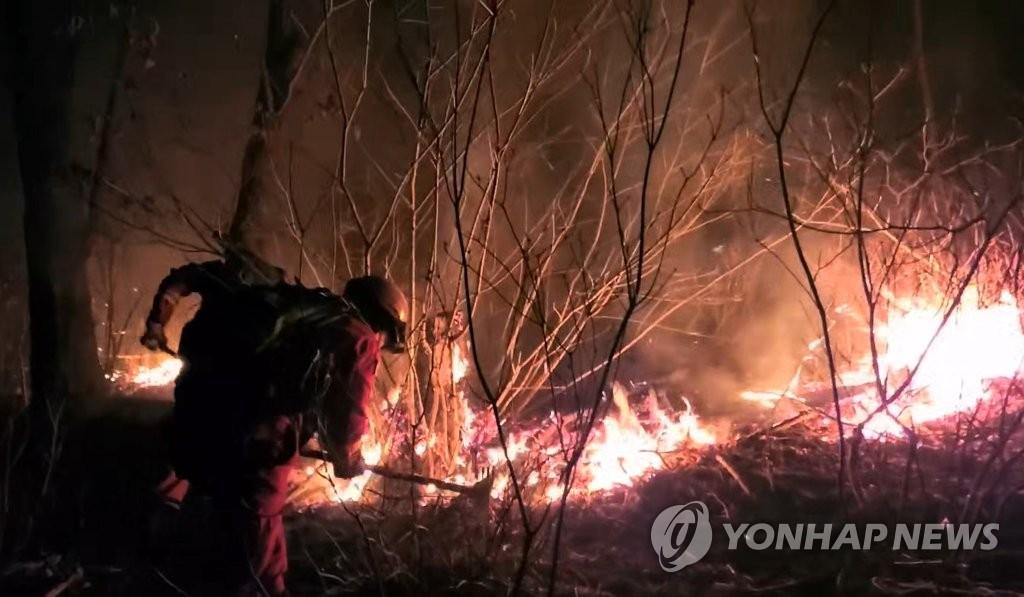详讯:韩国中南部多地发生森林火灾