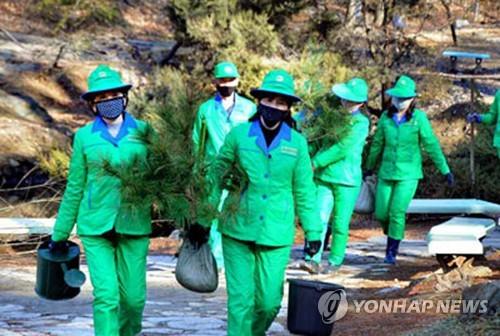 朝鲜迎植树节