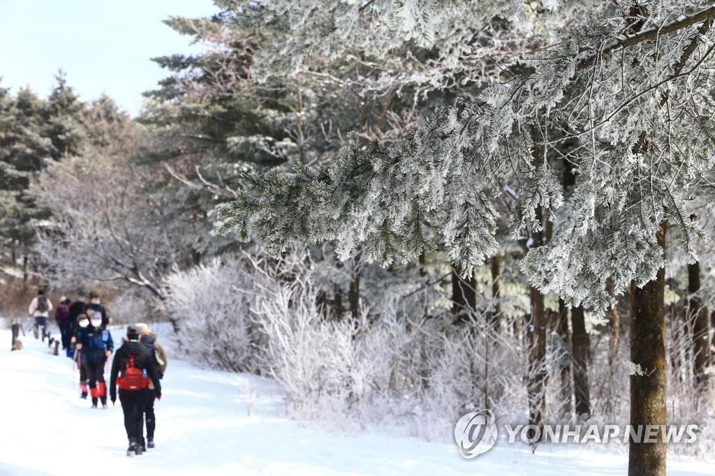 大关岭雪路