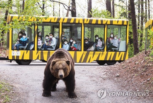 爱宝乐园推导览车游野生动物园