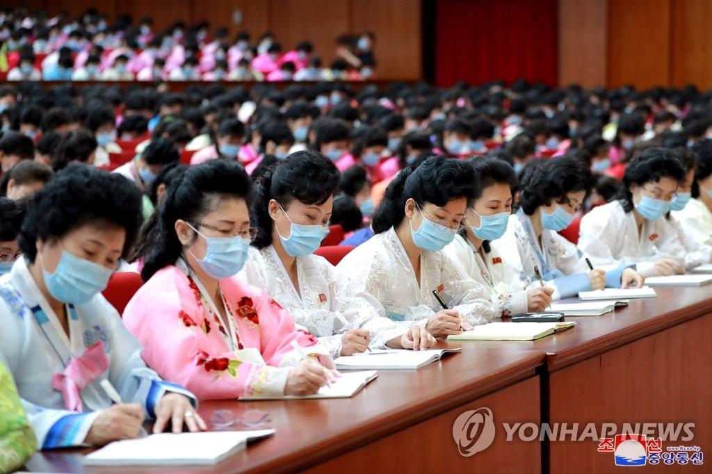 朝鲜为妇联大会与会者开讲座