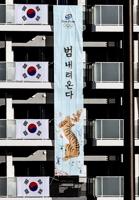 大韩体育会吁媒体勿过度解读奥运加油条幅