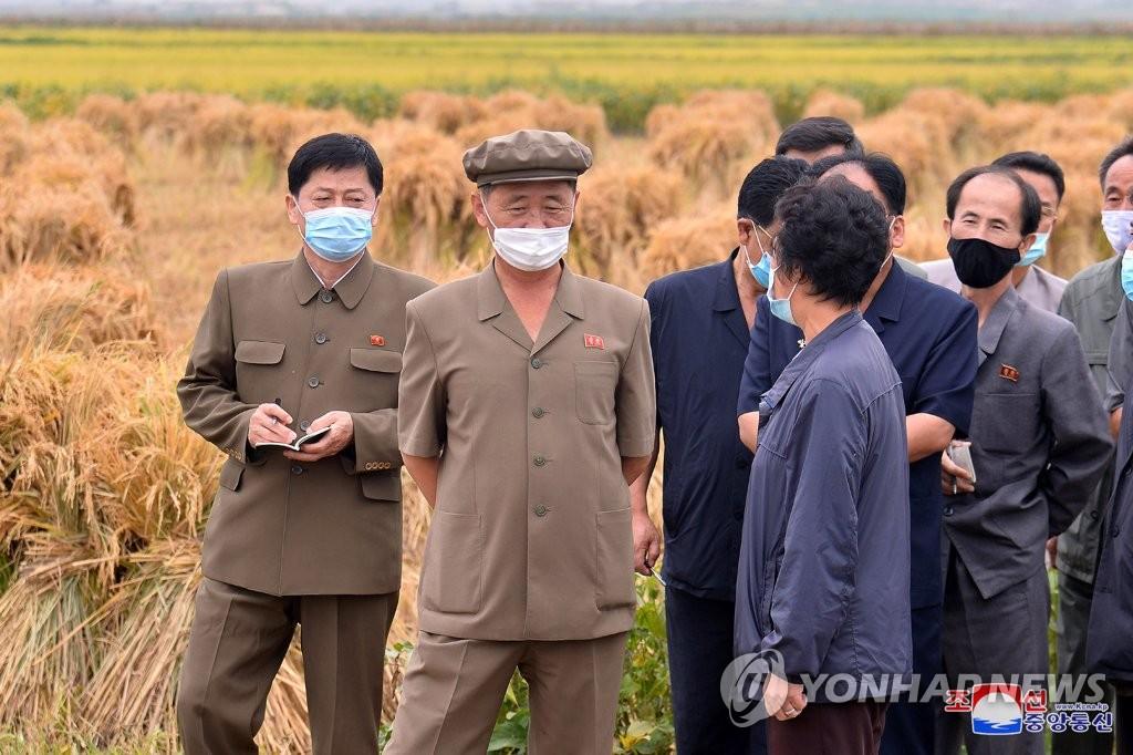 朝鲜总理视察农场