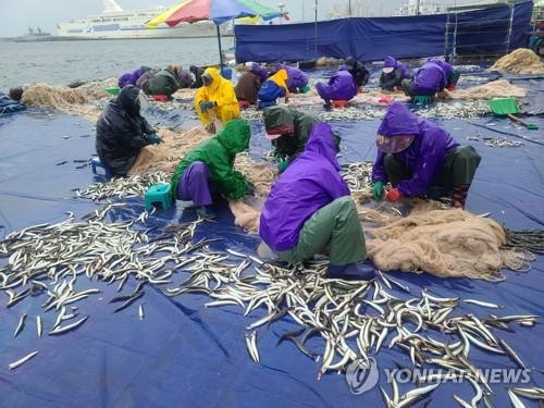 渔民喜获丰收