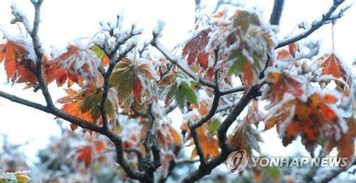 首尔今晨气温降至冰点 创64年来同期最低值